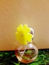 Ромашка желтый 30мл